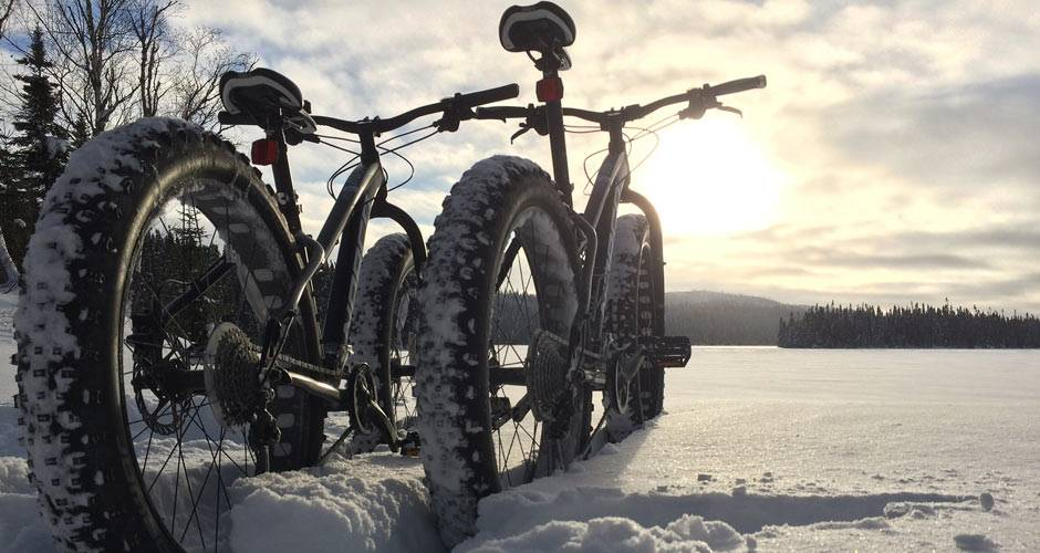 Two fat tire bikes stand in a snowy field